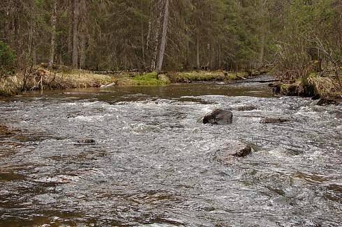 Река Язьва и ее притоки — Молмыс, Цепел и Глухая Вильва